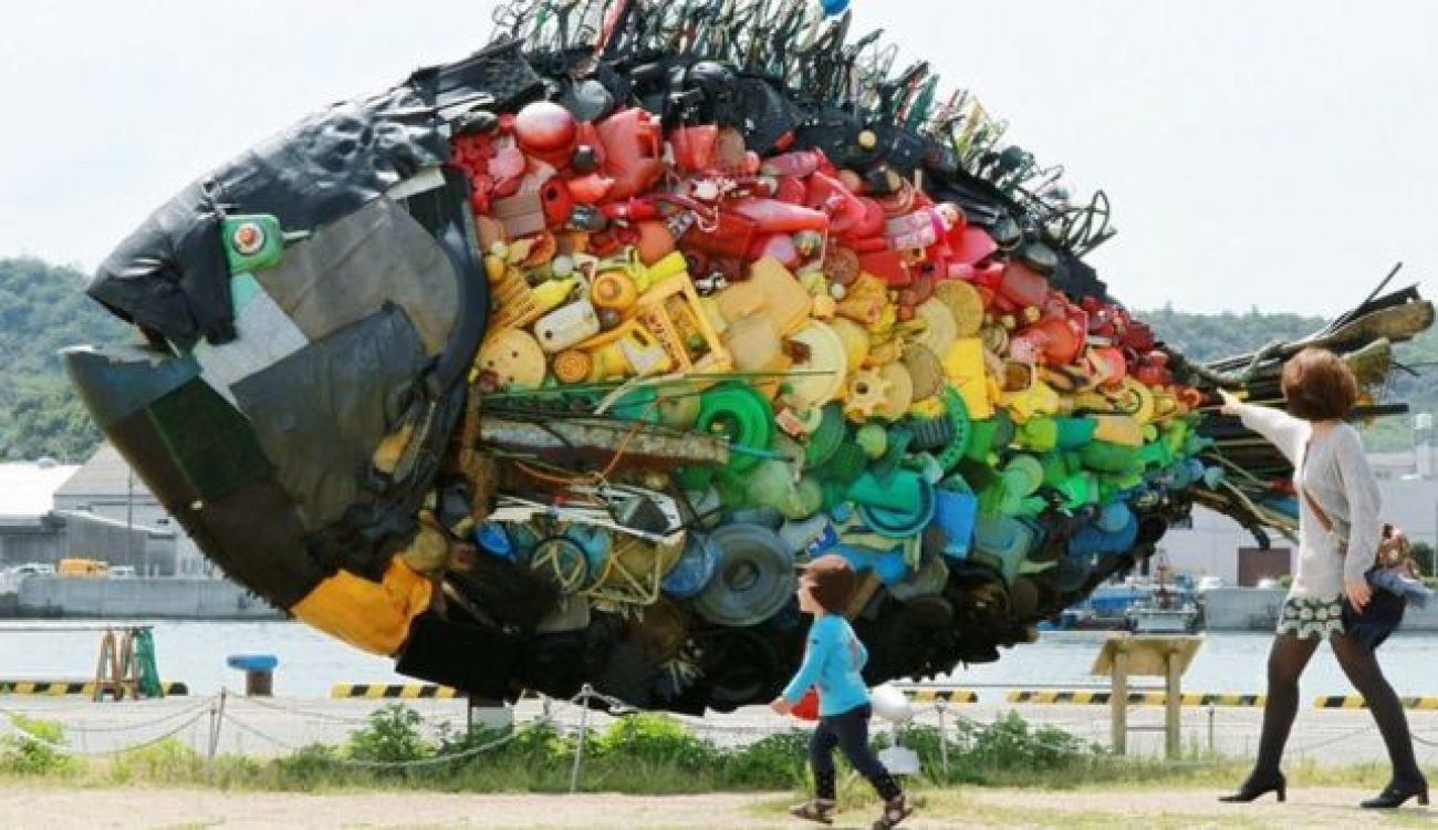 Will there be more fish or plastic in the sea in 2050 ?